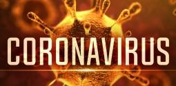 Coronavírus (COVID-19): cuidados e recomendações